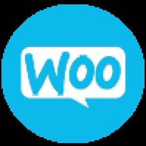 woocommerce-training-icon-2